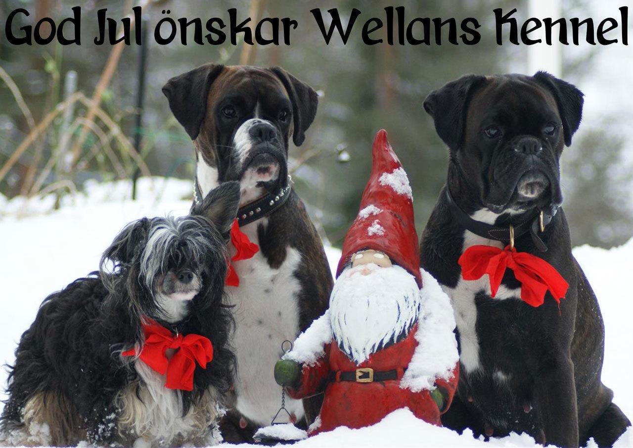 wellans_julkort